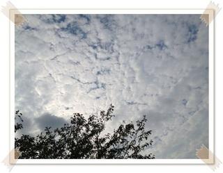 秋の曇り空_400.jpg